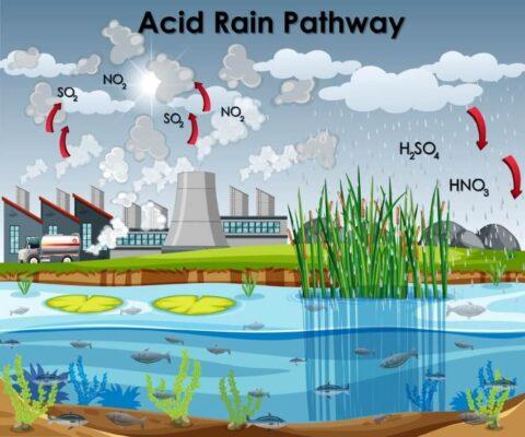 Nước mưa được hình thành như thế nào?
