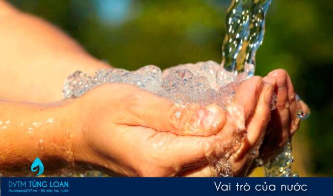 Vai trò của nước với sức khoẻ và đời sống