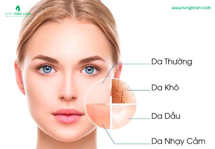 Các loại da phổ biến